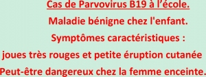 Archives Informations virus